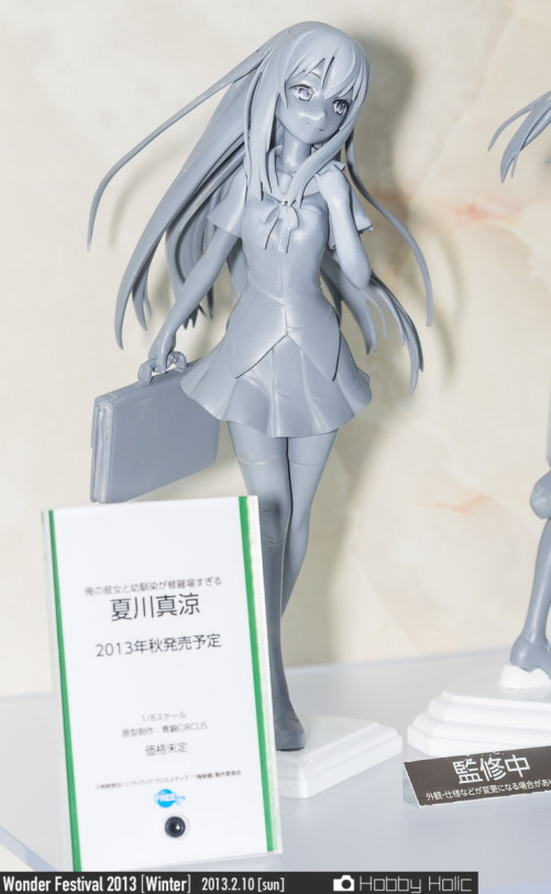 wf2013winter_wonderful_hobby_21