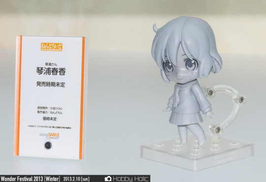 wf2013winter_wonderful_hobby_53