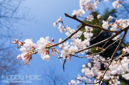 2013_0316_ueno_akihabara_13