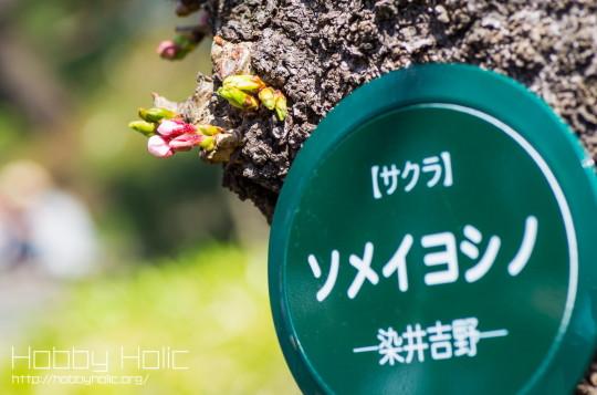 2013_0316_ueno_akihabara_17