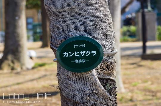 2013_0316_ueno_akihabara_24