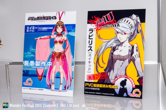 wf2013summer_quesq_03