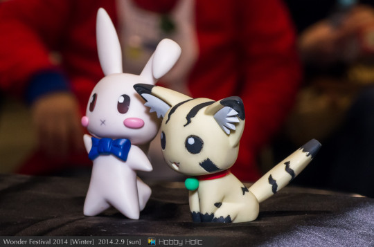 wf2014winter_gsproject_18