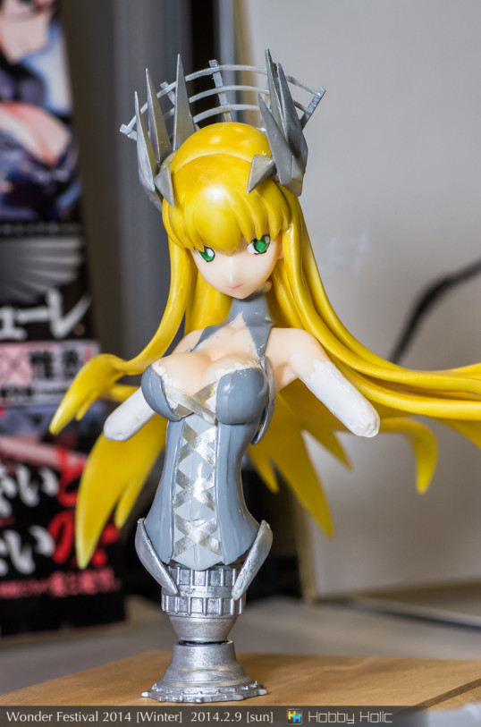 wf2014winter_karugamo_10