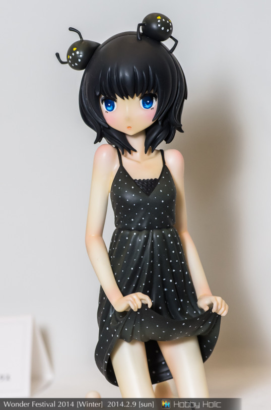 wf2014winter_rglattcc_11