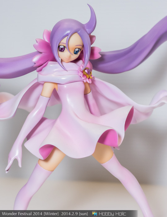 wf2014winter_torabrindle_14