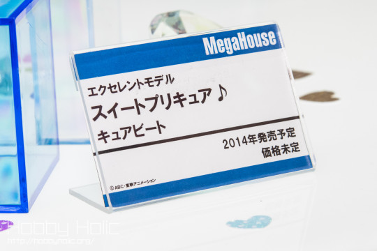 megahobby_2014_spring_megahouse_23
