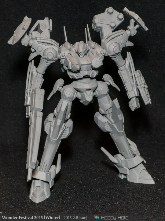 wf2015winter_4_17_13_hachikaraplus_01