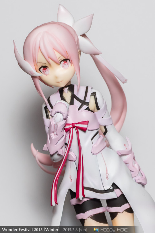 wf2015winter_6_28_03_gsproject_13