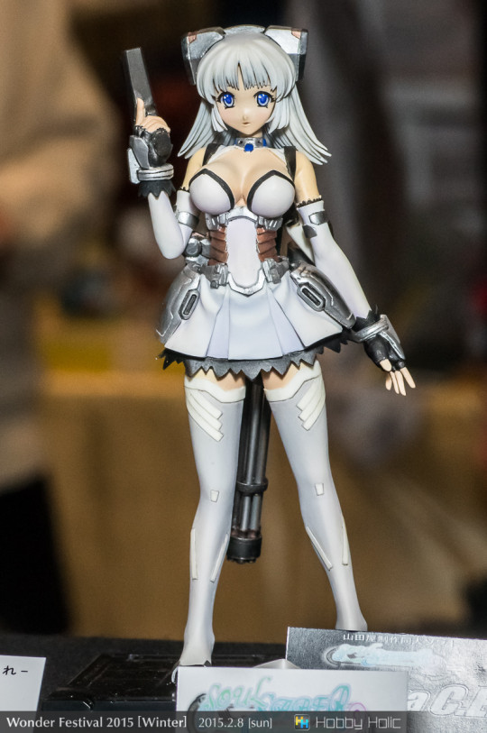 wf2015winter_7_08_17_yamadaya_01