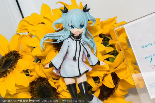 wf2015winter_8_18_09_wisywig_04