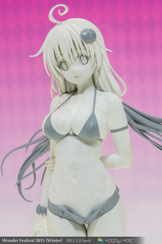 wf2015winter_alter_44
