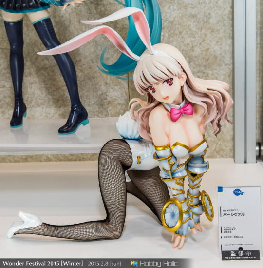 wf2015winter_wonderful_hobby04_105