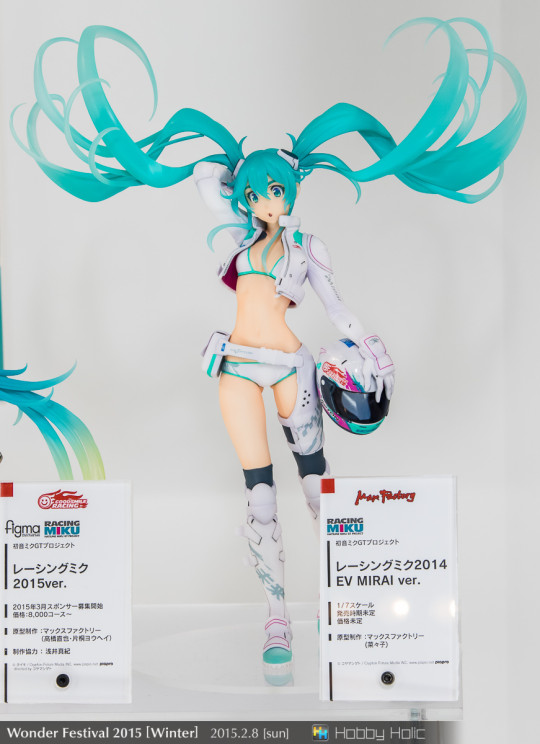 wf2015winter_wonderful_hobby04_233