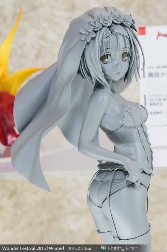 wf2015winter_wonderful_hobby04_43
