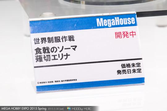 megahobby_2015_spring_megahouse_65
