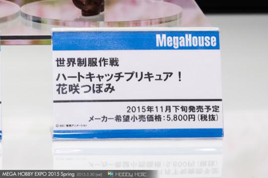 megahobby_2015_spring_megahouse_79