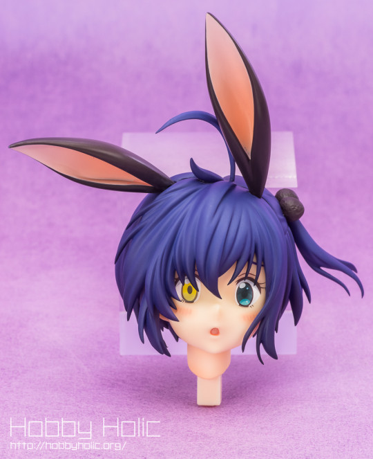 hobbystock_takanashi_rikka_bunny_25
